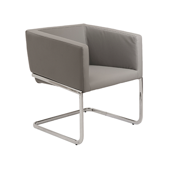Ari Lounge Chair - Gray